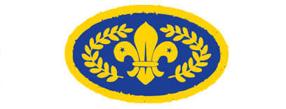 Scouts achieve their Chief Scouts Gold Award with 5th Hyde Scout Group