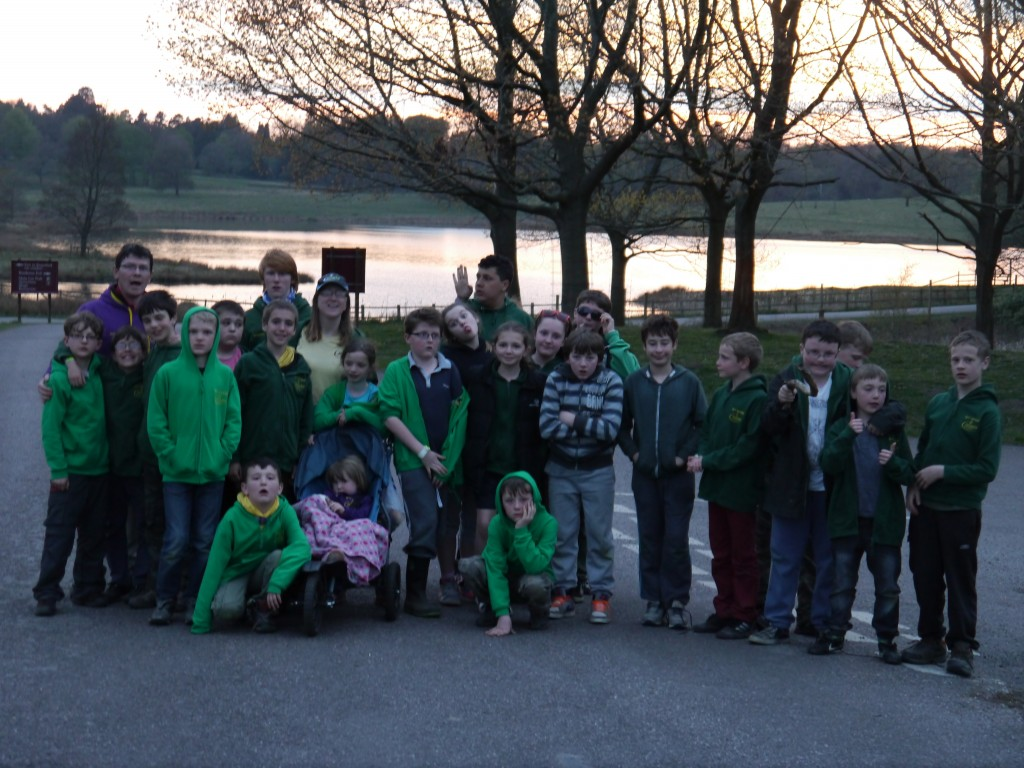 5th Hyde Cubs and Scouts take an evening stroll in Tatton Park - in search of Deer.